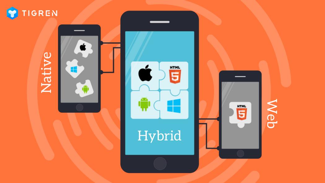 native_web_hybrid_app